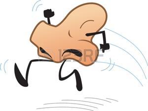 Frattura delle ossa nasali