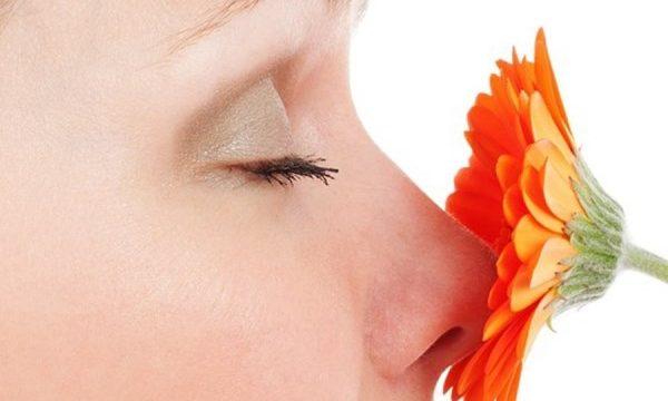 Alterazione dell'olfatto